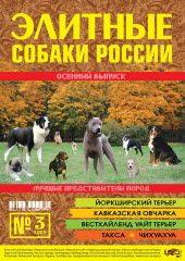 Элитные собаки России №3